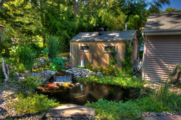 Portfolio of pond installation service and maintenance for Large pond maintenance