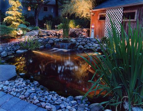Adding night interest to your pond landscape lighting nj for Pond lights